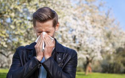Allergisæsonen er her: Lær hvordan akupunktur kan hjælpe dine allergier.